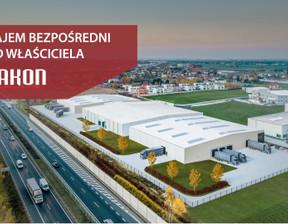 Magazyn, hala w inwestycji Jakon Kostrzyn Wielkopolski, Kostrzyn, 4500 m²