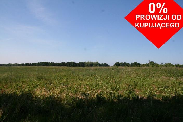 Działka na sprzedaż, Ramlewo, 28156 m² | Morizon.pl | 6747