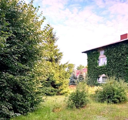 Dom na sprzedaż, Widawa, 220 m²   Morizon.pl   8677