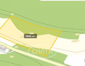 Działka na sprzedaż, Srebrna Góra, 5850 m²