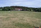 Działka na sprzedaż, Podjazy, 5300 m² | Morizon.pl | 2721 nr6