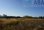 Działka na sprzedaż, Golina-Kolonia, 48400 m²   Morizon.pl   9181 nr4
