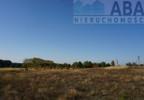 Działka na sprzedaż, Golina-Kolonia, 48400 m²   Morizon.pl   9181 nr2