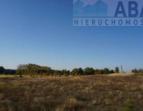 Działka na sprzedaż, Golina-Kolonia, 48400 m²