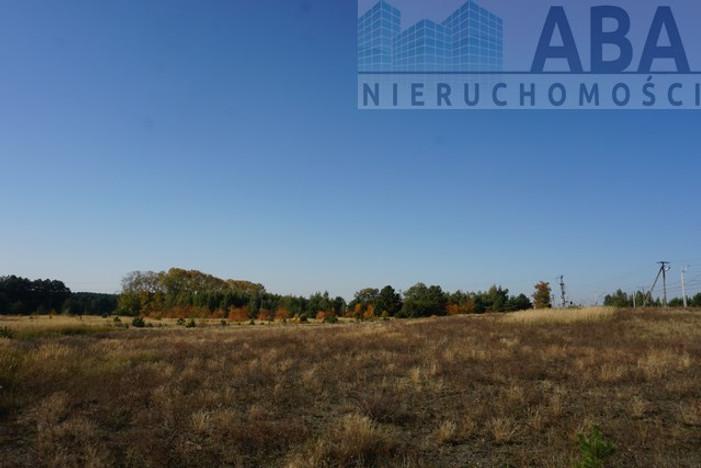 Działka na sprzedaż, Golina-Kolonia, 48400 m²   Morizon.pl   9181