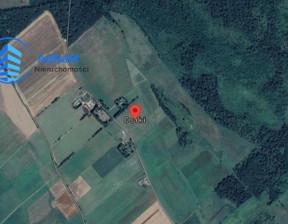 Działka na sprzedaż, Osiki, 169776 m²