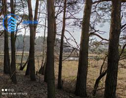 Morizon WP ogłoszenia   Działka na sprzedaż, Bogatki, 10600 m²   9536