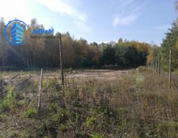 Morizon WP ogłoszenia | Działka na sprzedaż, Siestrzeń, 16400 m² | 7994