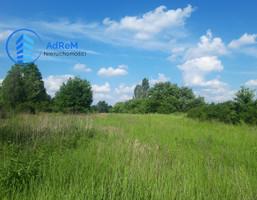 Morizon WP ogłoszenia   Działka na sprzedaż, Bielawa, 75000 m²   4517