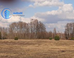 Działka na sprzedaż, Krzaki Czaplinkowskie, 24800 m²