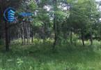 Morizon WP ogłoszenia   Działka na sprzedaż, Zawodne, 3000 m²   4761