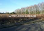 Działka na sprzedaż, Złotokłos, 24500 m²   Morizon.pl   0931 nr6