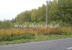 Działka na sprzedaż, Złotokłos, 24500 m²   Morizon.pl   0931 nr5