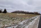 Działka na sprzedaż, Ciepłe, 5500 m² | Morizon.pl | 1580 nr5