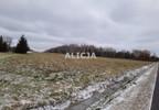 Działka na sprzedaż, Ciepłe, 5500 m² | Morizon.pl | 1580 nr6