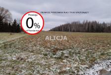 Działka na sprzedaż, Ciepłe, 5500 m²