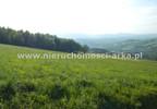 Działka na sprzedaż, Wilkowisko, 17400 m² | Morizon.pl | 1141 nr4