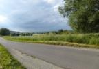 Działka na sprzedaż, Krosnowice, 6300 m²   Morizon.pl   2835 nr3