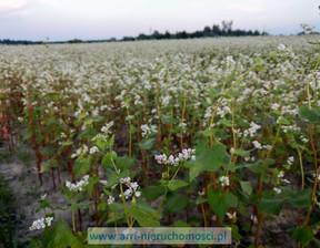 Działka na sprzedaż, Łazy ALTERNATYWY, 20000 m²