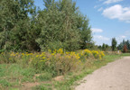 Działka na sprzedaż, Wierzchowisko, 1054 m² | Morizon.pl | 4520 nr5