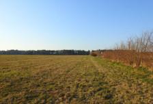 Działka na sprzedaż, Słuchowo, 11688 m²