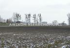 Działka na sprzedaż, Czerwona Niwa, 14800 m² | Morizon.pl | 2080 nr7