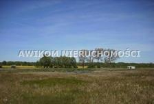 Działka na sprzedaż, Basin, 3900 m²