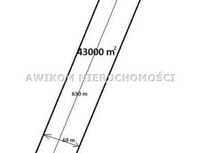 Działka na sprzedaż, Nowy Łajszczew, 43000 m²