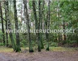 Morizon WP ogłoszenia   Działka na sprzedaż, Osowiec, 7688 m²   3204