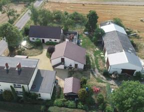 Obiekt na sprzedaż, Rogowo, 920 m²