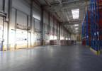 Magazyn do wynajęcia, Kowale Gdańsk Kowale, 4000 m² | Morizon.pl | 0337 nr5