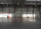 Magazyn do wynajęcia, Kowale Gdańsk Kowale, 4000 m² | Morizon.pl | 0337 nr7
