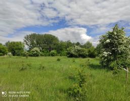 Morizon WP ogłoszenia   Działka na sprzedaż, Szczypiorno, 2546 m²   8245
