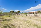 Dom na sprzedaż, Hiszpania Alicante, 3000 m² | Morizon.pl | 5331 nr20