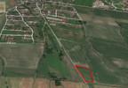 Działka na sprzedaż, Dobrzykowice Krótka, 8100 m² | Morizon.pl | 5977 nr5