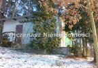 Działka na sprzedaż, Lucim, 6500 m² | Morizon.pl | 9354 nr5
