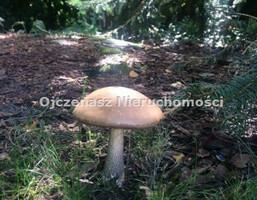 Morizon WP ogłoszenia   Działka na sprzedaż, Bydgoszcz Piaski, 4500 m²   3069