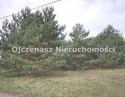 Morizon WP ogłoszenia | Działka na sprzedaż, Kruszyn, 2201 m² | 0919