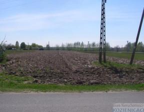 Działka na sprzedaż, Janików, 2900 m²