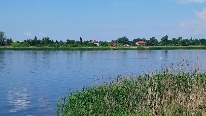 Działka na sprzedaż, Wołomiński (pow.) Dąbrówka (gm.) Dąbrówka, 2500 m²   Morizon.pl   8632