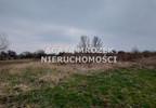 Działka na sprzedaż, Januszkowice, 3800 m² | Morizon.pl | 0394 nr5