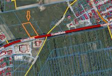 Działka na sprzedaż, Stare Bielice, 9992 m²