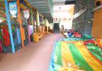 Obiekt do wynajęcia, Pszczyna Dobrawy, 480 m²   Morizon.pl   5480 nr7
