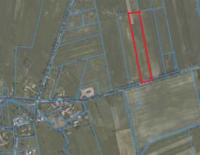 Działka na sprzedaż, Ogrodniki, 15400 m²