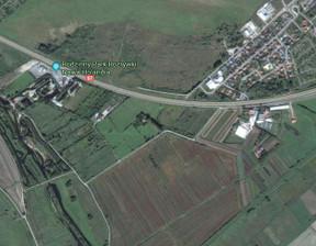 Działka na sprzedaż, Elbląg Nowe Pole, 136100 m²
