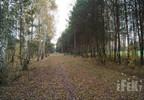 Działka na sprzedaż, Waleriany, 1307 m² | Morizon.pl | 8988 nr4