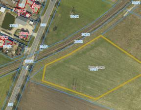 Działka na sprzedaż, Bolechowo, 7670 m²