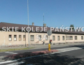 Lokal użytkowy do wynajęcia, Września, 338 m²