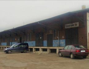 Magazyn, hala do wynajęcia, Ostrów Wielkopolski Towarowa, 544 m²