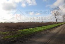 Działka na sprzedaż, Krzyżowniki, 10105 m²